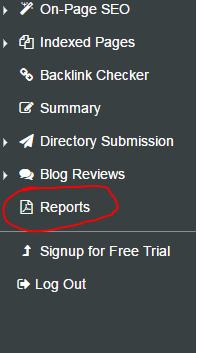 seo report menu